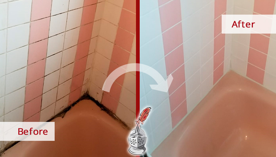 tile and grout cleaners refreshed