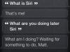 Who is Siri????