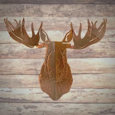moose head pine wall