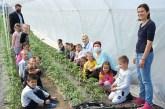 Predškolci obeležili Dan planete zemlje u Martincima