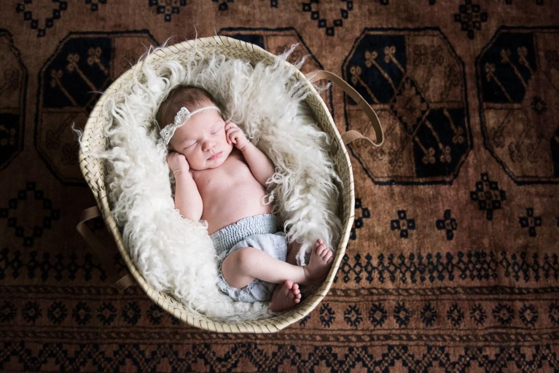 Vastasyntyneen kuvaus, kori, ruskea matto