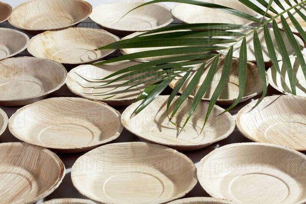 palam leaf plate tamil
