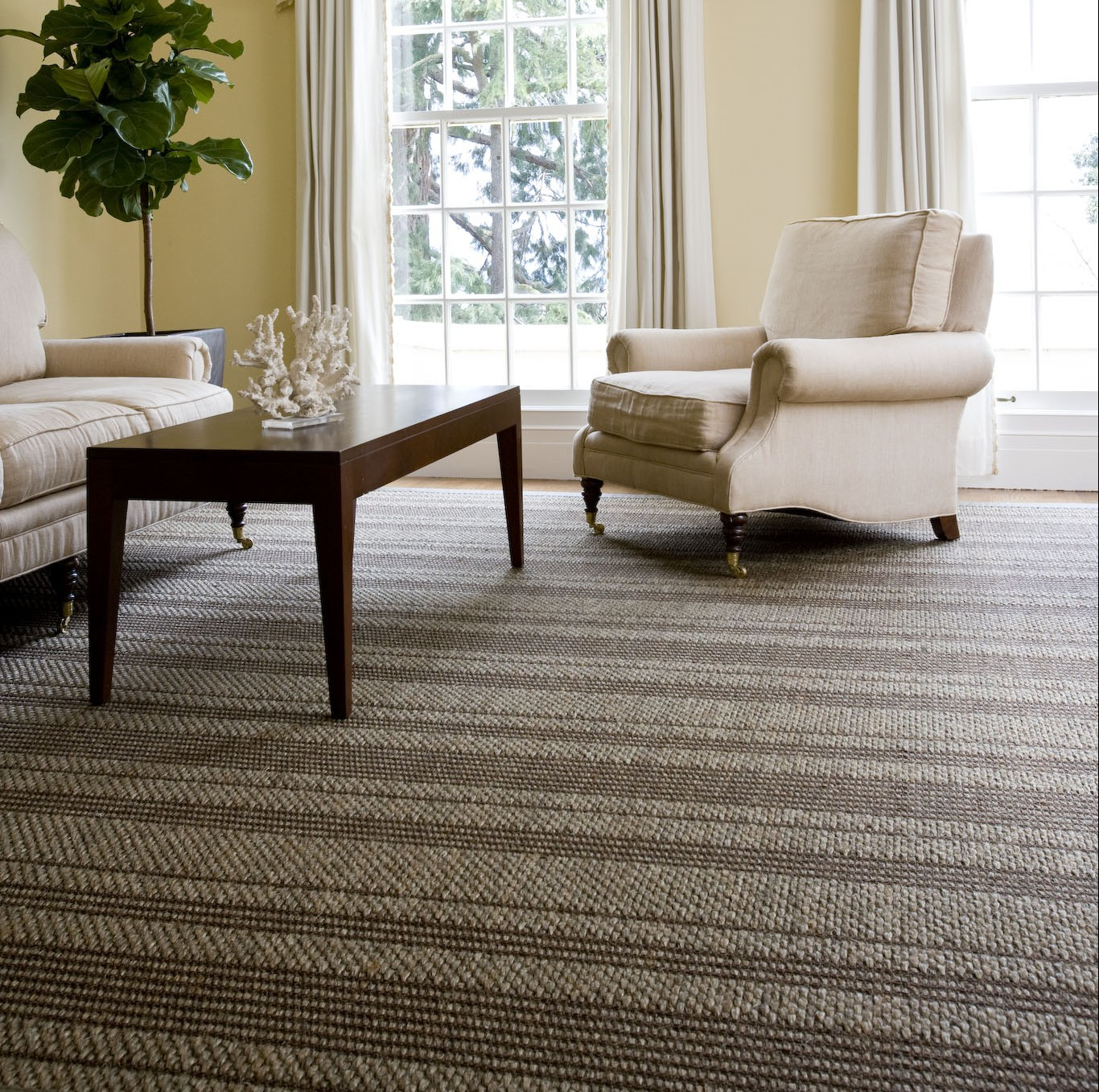 Sisal - what is it and what is it for? 6