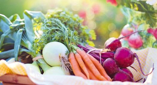 Risultati immagini per alimentazione sana
