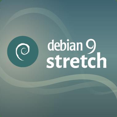 Logo Rasbpian Stetch 9
