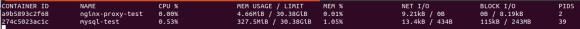 """Captura de pantalla del comando """"docker container stats""""."""