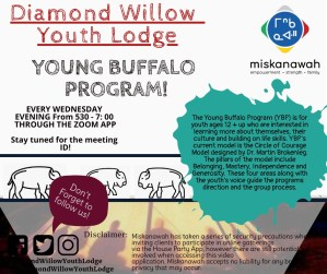 Young Buffalo Program @ Diamond Willow Youth Lodge - Zoom Meeting