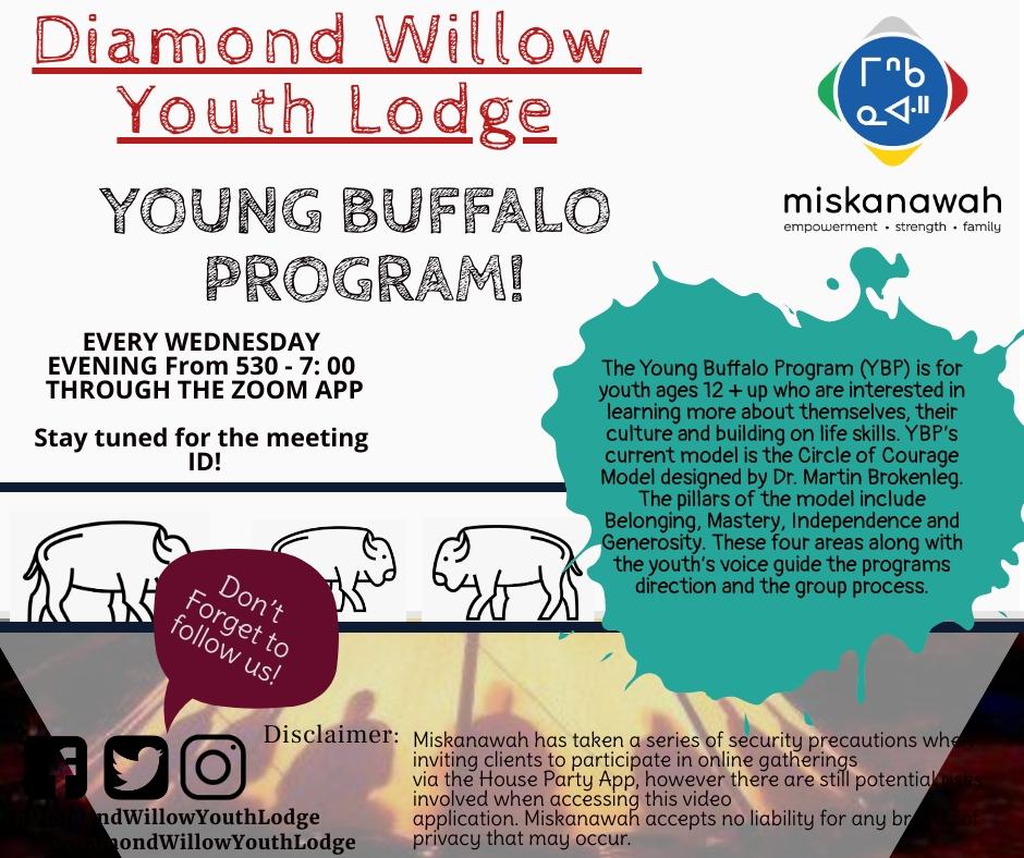 Young Buffalo Program