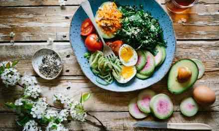 The Wellness Series – Low Carbs, High Fat Diet