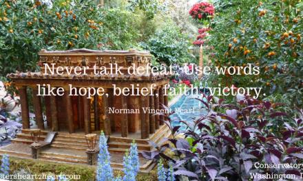 Never Talk Defeat, Norman Vincent Pearle