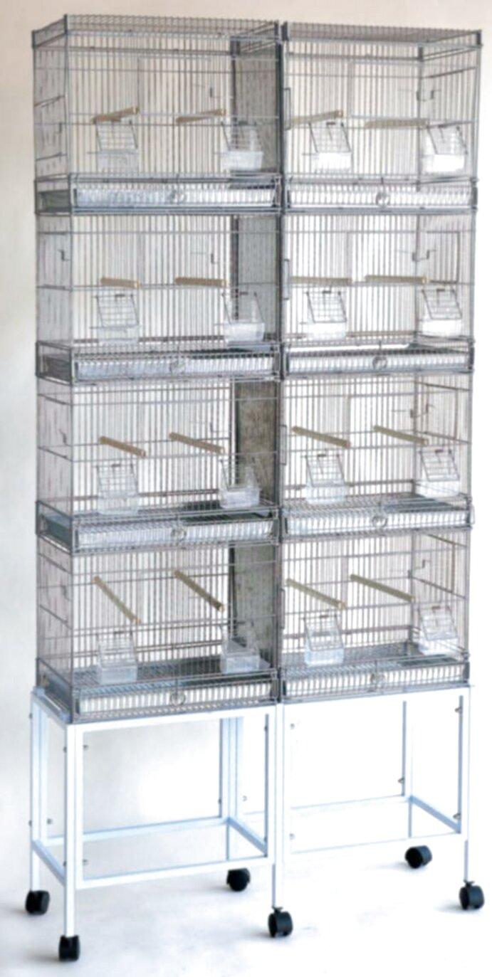 pouciti ometati nadzornik grande cage oiseaux occasion