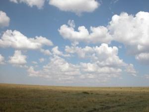 とにかく草、草、草の大平原。人工物は見当たらない。頭上には雲、雲、そして青空。真上を見上げると、目のふちに地平線をとらえながら、地球の丸さを感じることができる。この丸さ、写真やビデオで表現できないのが残念。