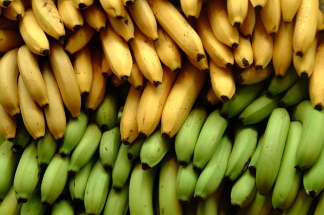 Babosa com banana