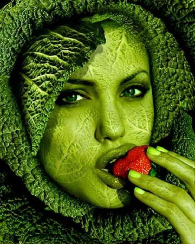 Resultado de imagem para imagens de pessoas importantes vegetarianas