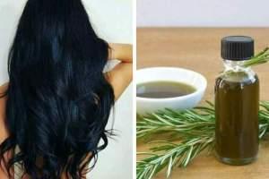 Dicas para usar o alecrim no cabelo