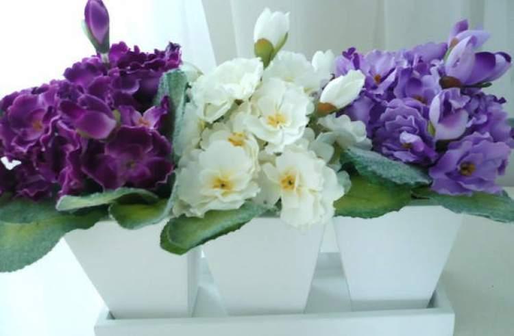 Violeta é uma das plantas para decorar o apartamento com muita elegância e bom gosto