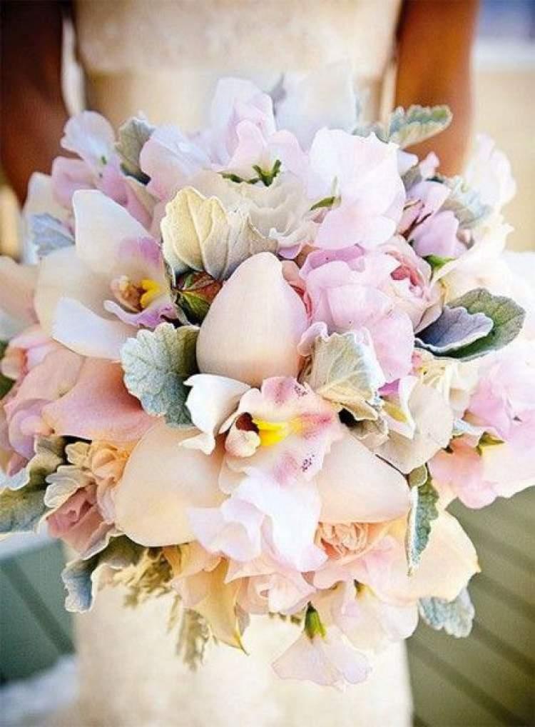Orquídeas simbolizam o amor