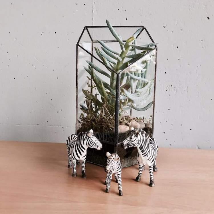 Terrário com objetos decorativos
