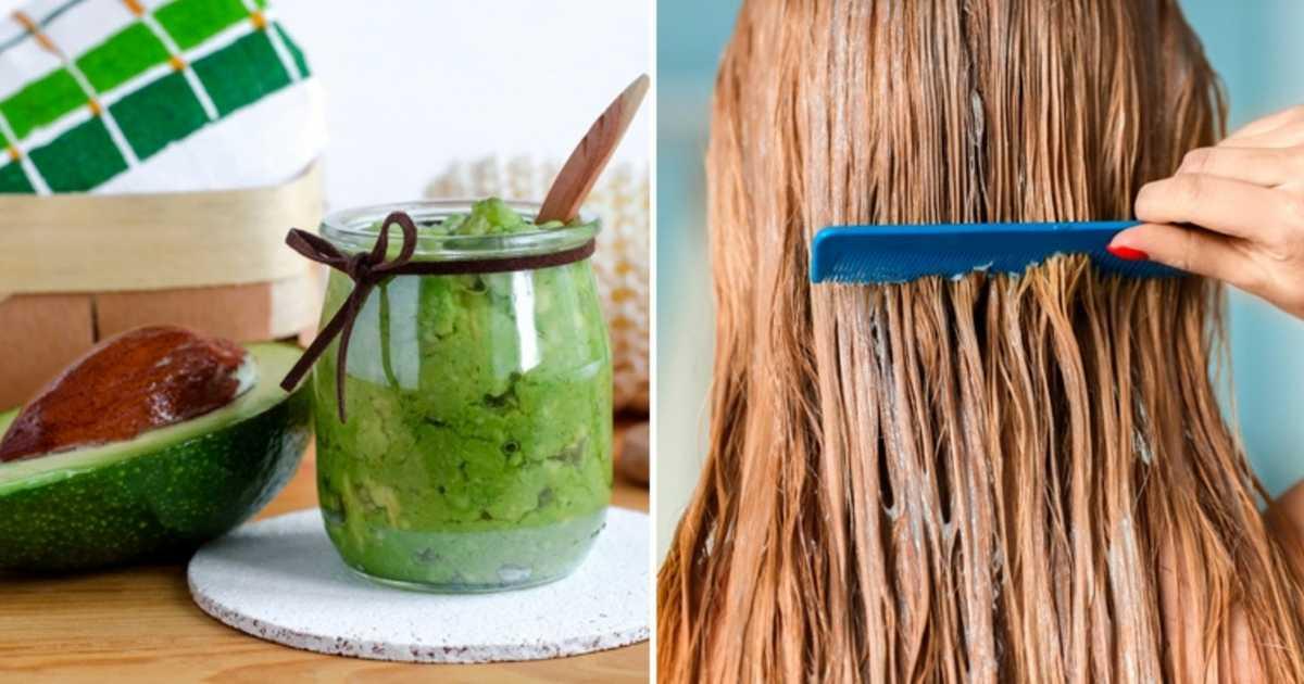 Veja como fazer uma hidratação com abacate para o cabelo passo a passo