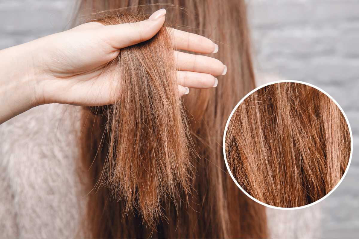 cabelo danificado
