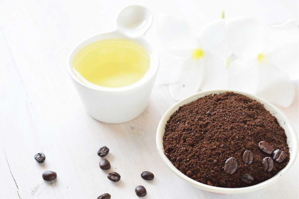 hidratação com café e azeite