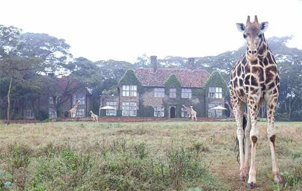 Giraffe Manor, Quênia