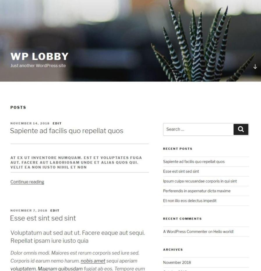 The TwentySeventeen theme with placeholder content