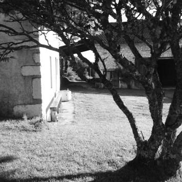 black & white at cataluna