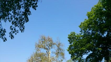 ciel de canicule