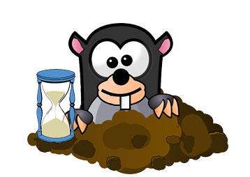 Mole Timekeeping