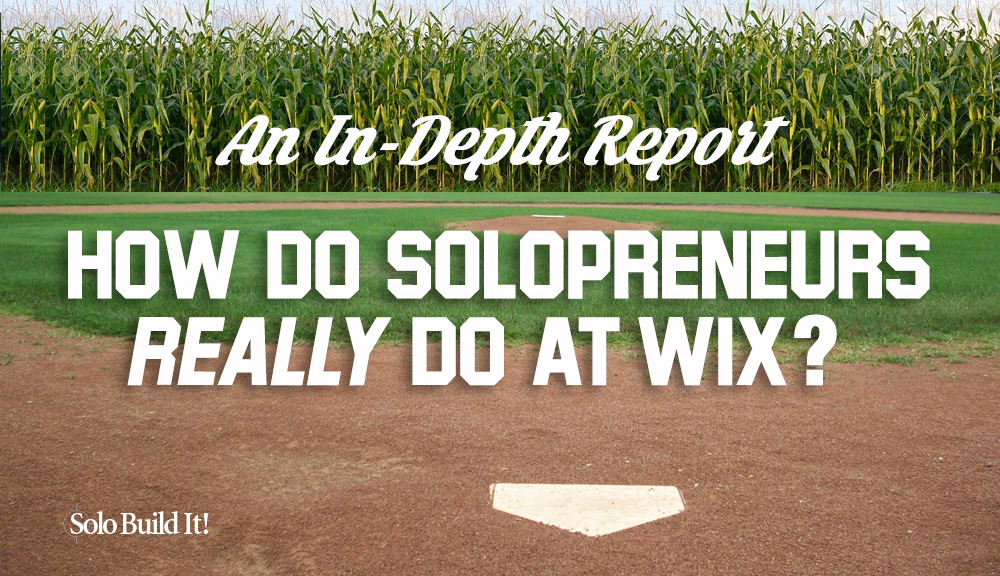 How Do Solopreneurs Really Do at Wix? An In-Depth Look.