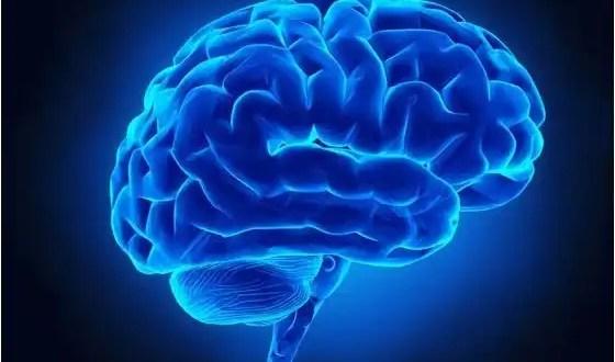 Crean implante que restaura funciones cerebrales