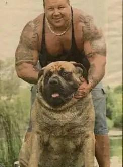 Fotos del perro más grande del planeta