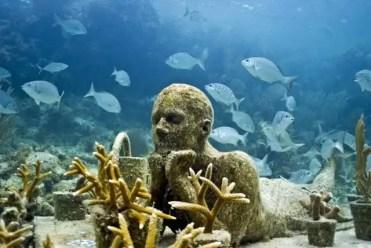 """Fotos: Arrecife """"urbano"""" con casas para animales marinos"""