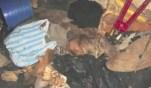 Fotos fuertes - Una mujer maltrataba y mataba a sus mascotas