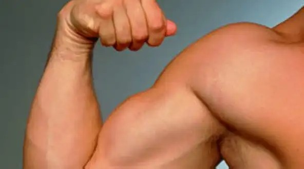 ¿Desarrollar músculos alarga la vida?