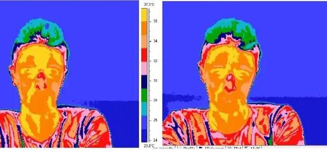 Cuando mentinos cambia la temperatura de la nariz