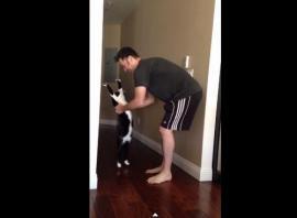"""El """"abrazo del gato"""" que causa furor en la web"""