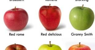 Variedades de manzana