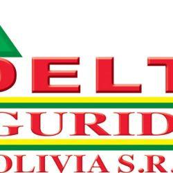 DELTA Logo actual corregido 2012