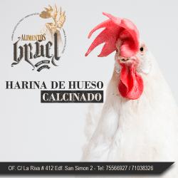 POLLO-HARINA-DE-HUESO-CALCINADO (1)