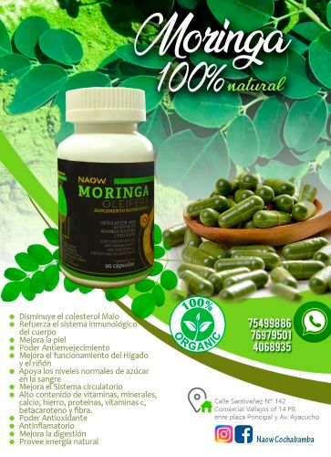moringa red