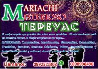 Anuncio Mariachi IMAGEN 2