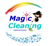 Arte Magic Cleaning 1