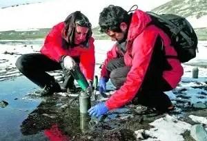 Curiosidades: Microbios antárticos que limpian las cloacas