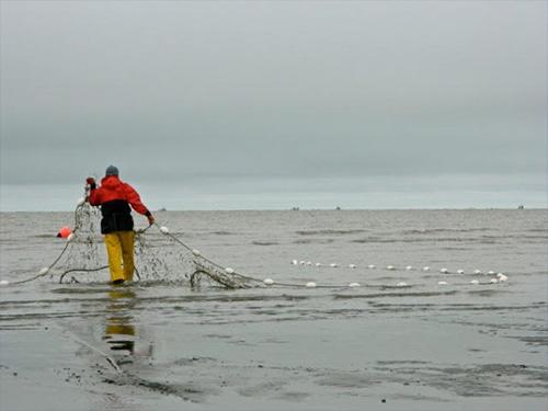 jpg Report identifies ways to rejuvenate Alaska's commercial fishing fleet