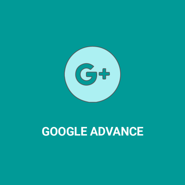 Pacchetto Google di sitoweblowcost