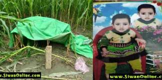 murder in barharia