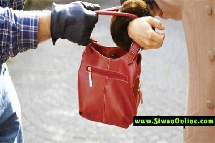 purse chori