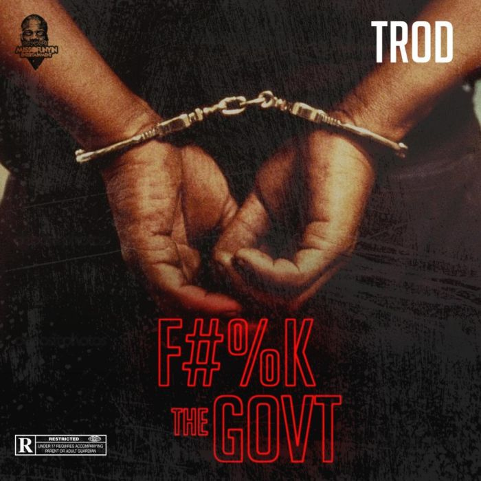 TROD – Fvck The Government